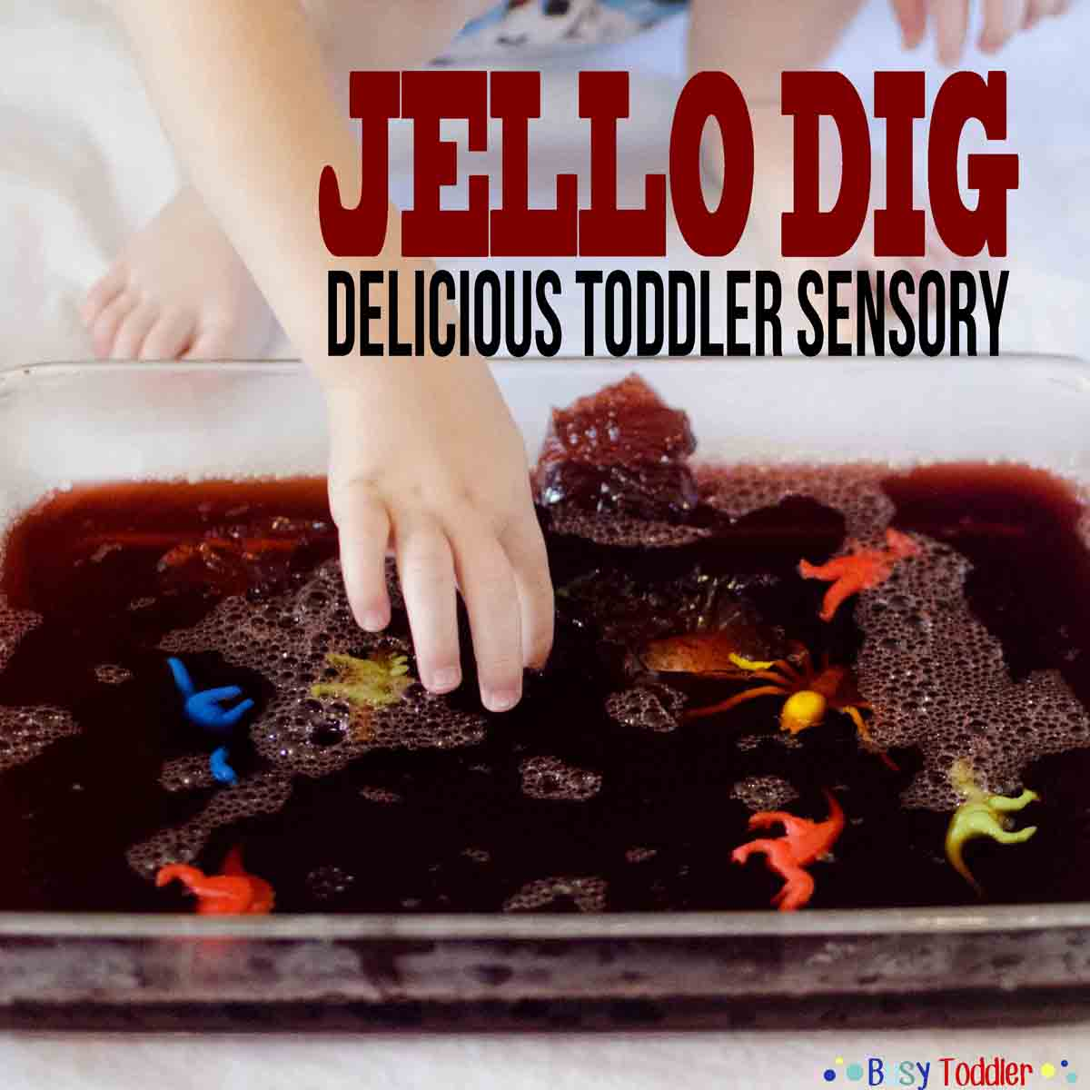 Jello Dig: a delicious toddler sensory activity