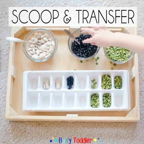 SCOOP AND TRANSFER: A simple toddler activity that's fun to play