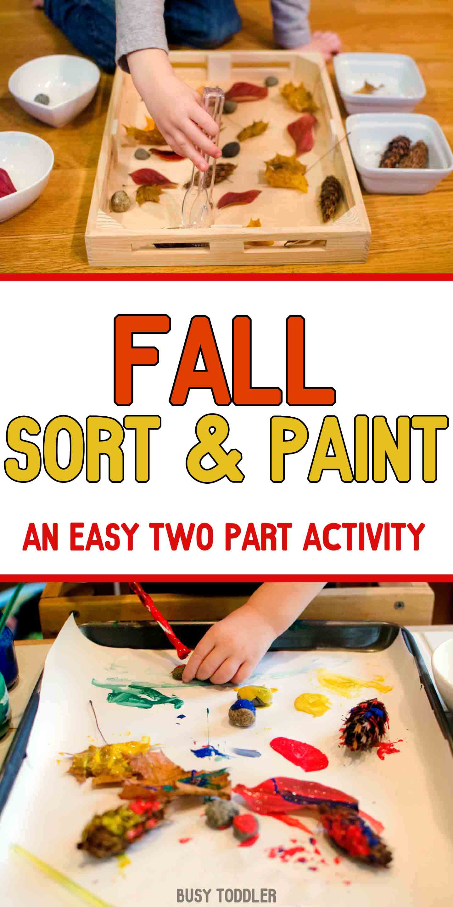 Fall Sort and Paint: A two part activity for toddlers; quick and easy fall activity; fall activity for toddlers