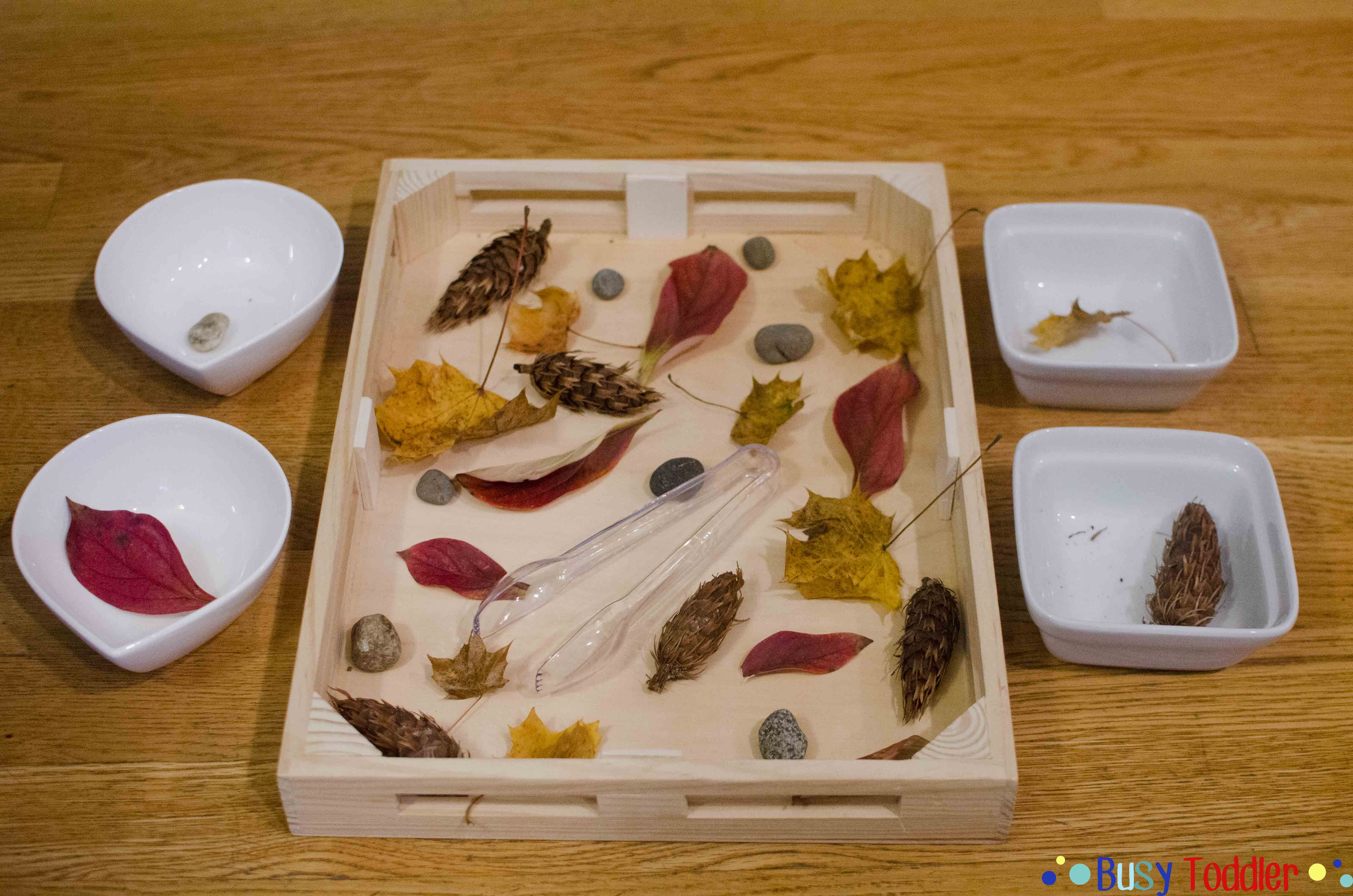 Fall Sort and Paint: A two part activity for toddlers; a fun way to include math and art with nature; easy indoor activity