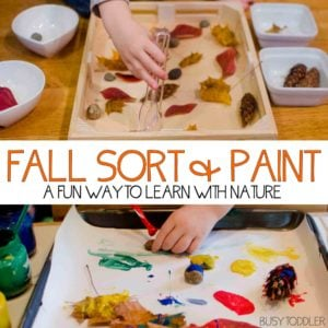 Fall Sort and Paint: A two part activity for toddlers