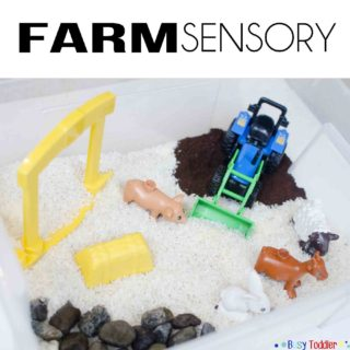 Farm Sensory Small World Play