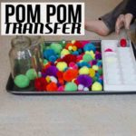 Pom Pom Transfer Activity