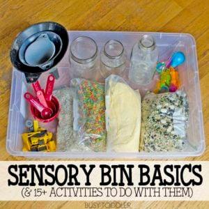 Sensory Bin Basics: What You Need to Have