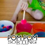 Pom Pom Sorting: Fine Motor Skills Activity
