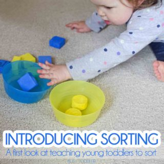 Introducing Sorting: Teaching Young Toddlers