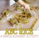 ABC Rice Bin