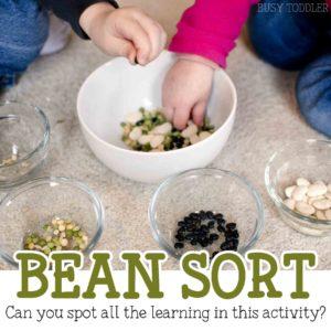 Bean Sort Easy Activity