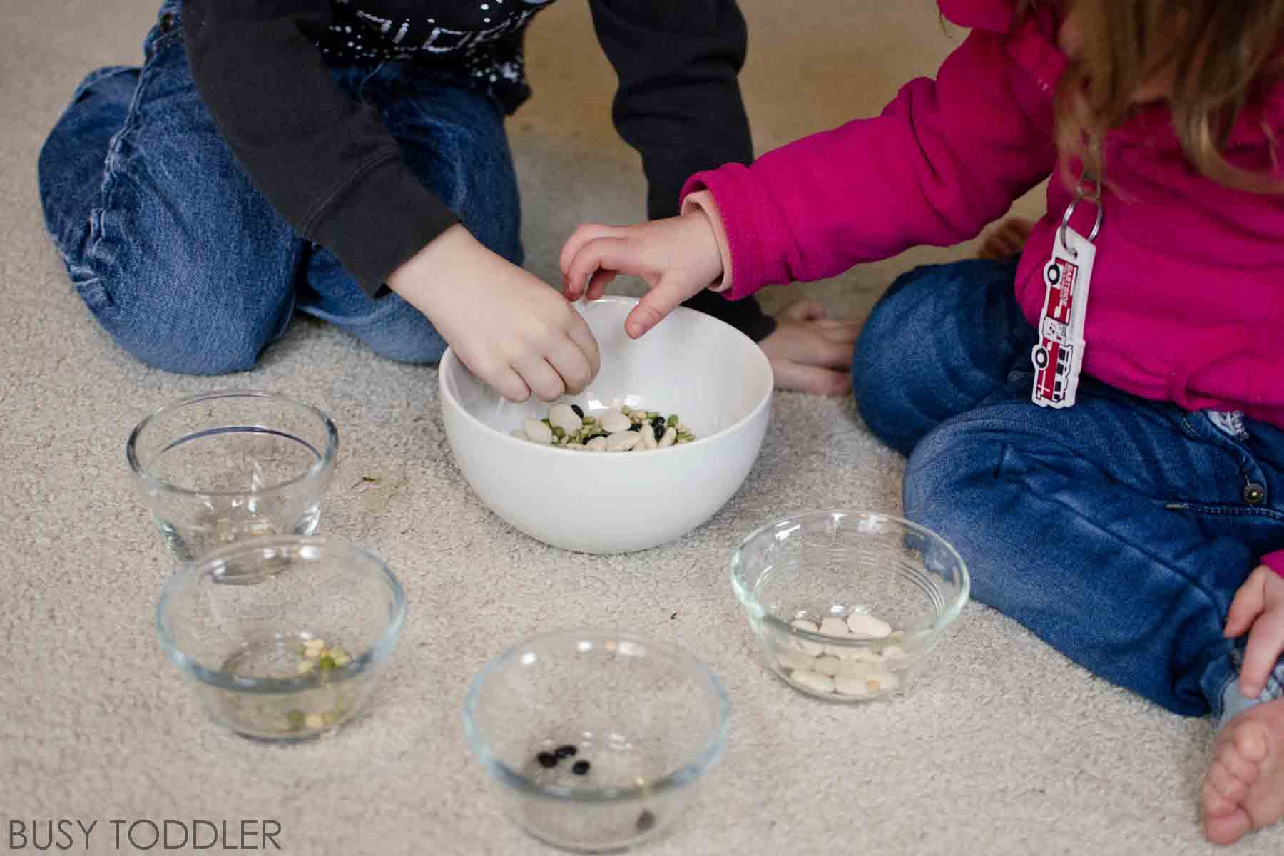 BEAN SORT: A fantastically easy activity for toddles; a great teamwork building activity that toddlers will love. Check out this awesome simple indoor activity.