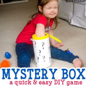Mystery Box Easy Toddler Activity
