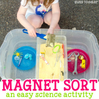 Easy Magnetic Sorting Activity