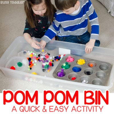 Make an Easy Pom Pom Sensory Bin