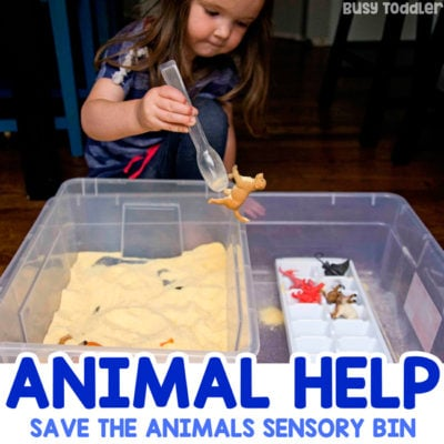 ANIMAL SENSORY BIN: A quick and easy sensory bin for toddlers and preschoolers; fine motor skills activity; cornmeal sensory bin; animal bin; learning about animals; easy indoor activity from Busy Toddler