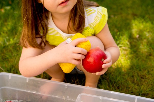 APPLE WASHING BIN:  An apple theme activity; apple unit; apple themes; fall activity; washing station; easy toddler activity; sensory activity; quick and easy activity from Busy Toddler