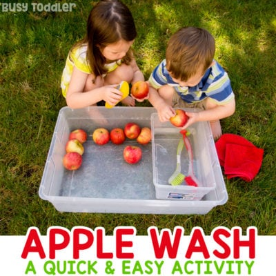 Apple Washing Bin Sensory Activity