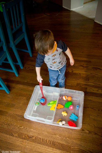 WATER SCOOP AND TRANSFER - A fun and simple life skills activity; taby activity; toddler activity; activity for two year olds; indoor activity; montessori activity; quick and easy activity; rainy day activity from Busy Toddler
