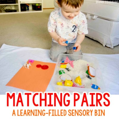 Matching Pairs: An Easy Sensory Activity