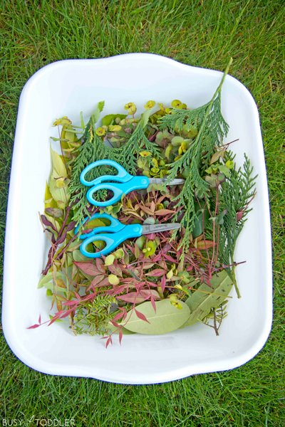 Yard clippings to be used in a kids activity about cutting