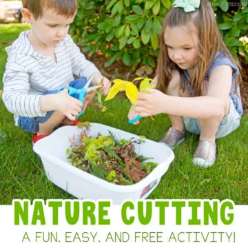 Nature Cutting Bin: A Fun Outdoor Activity