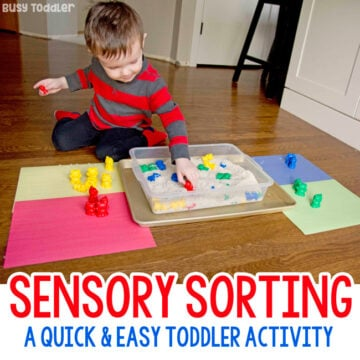 Sensory Sorting: A quick and easy toddler activity
