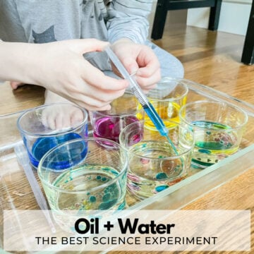 Oil and Water Science Experiment for Kids