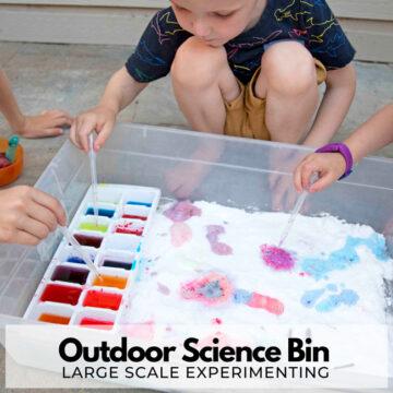 Outdoor Science Bin for Kids